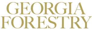 Georgia Forestry Magazine